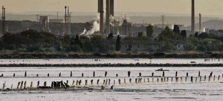 Donnez votre avis sur la problématique santé-environnement autour de l'étang de Berre