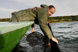 Pêcheurs d'anguilles –
