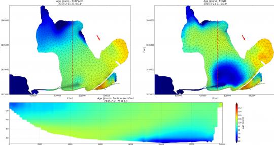 Simulation de l'age des masses d'eaux par le du modèle de l'étang de Berre (TELEMAC3D)