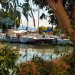 France Bouches Du Rhône Etang De Berre Les Ports De Pêche Et D