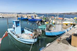 Thibault Vergoz, port de Marignane