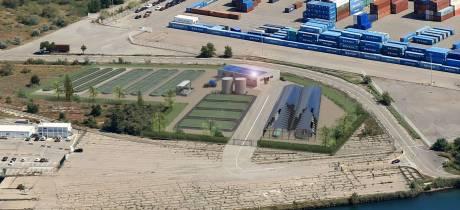 Transformer les ulves en produits industriels biodégradables