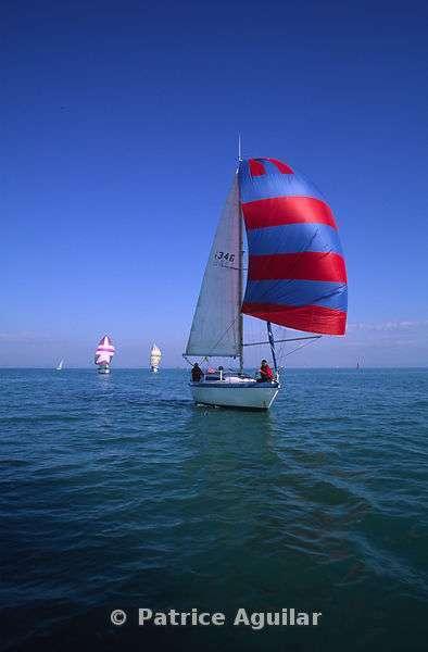 Régate Sur L'étang De Berre / Boats Race On The Pond Of Berre