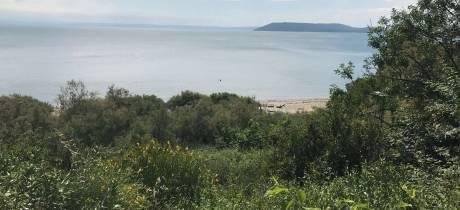 Opération de démoustication sur les rives de la Romaniquette à Istres