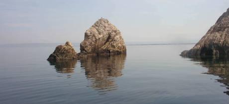 Suivez le Séminaire de Restitution pour la Réhabilitation de l'étang de Berre